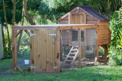 An ideal chicken coop for keeping chickens